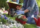 Cursos Gratuitos de Imagem Pessoal ou Jardinagem na Regional Penha. Participe e garanta seu emprego!